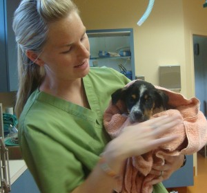 Fischer -- held by Megan -- at Canyon City Animal Hospital
