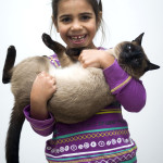 http://www.dreamstime.com/royalty-free-stock-image-girl-siamese-cat-image22599826