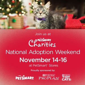National Adoption Weekend Texas Animal Guardians