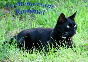 Rommel Memoriam